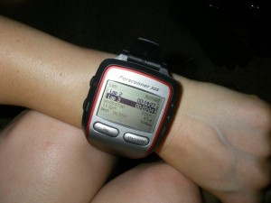 garminforerunner305